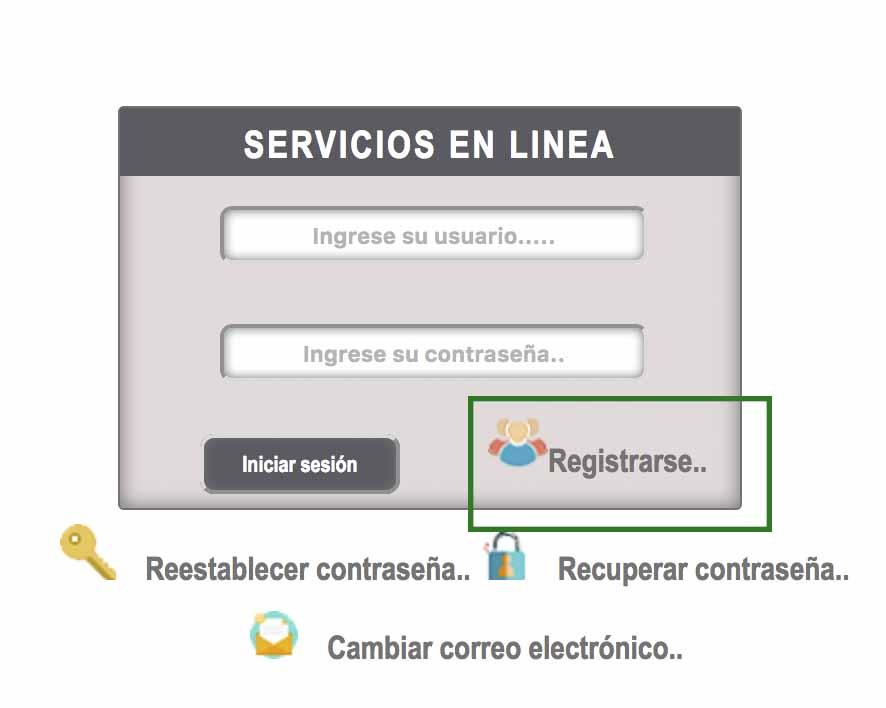 registro en line portal ieepo